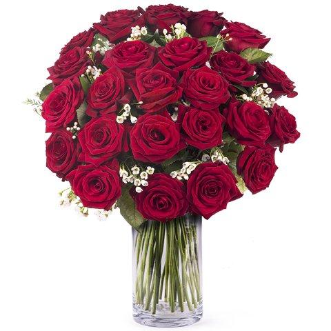 Vero Amore: 24 rose rosse